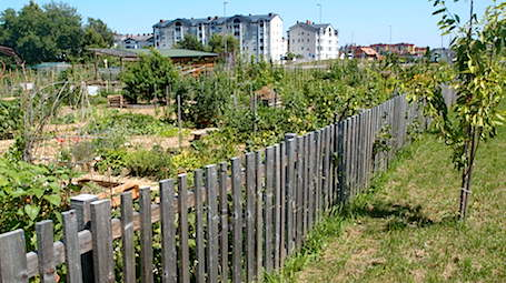 Community and Sustainable Urban Design