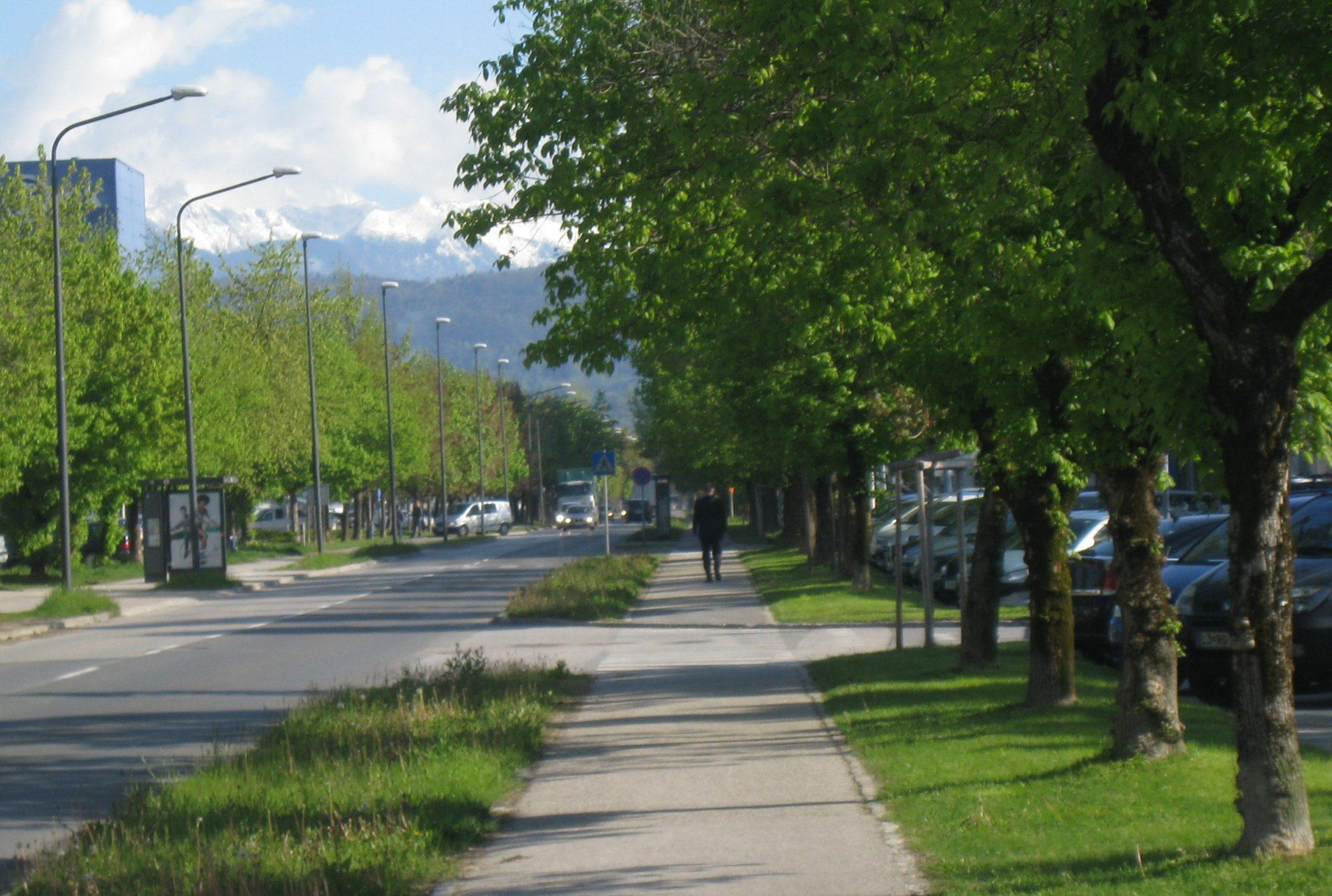 Prispevek drevja k hodljivosti mesta