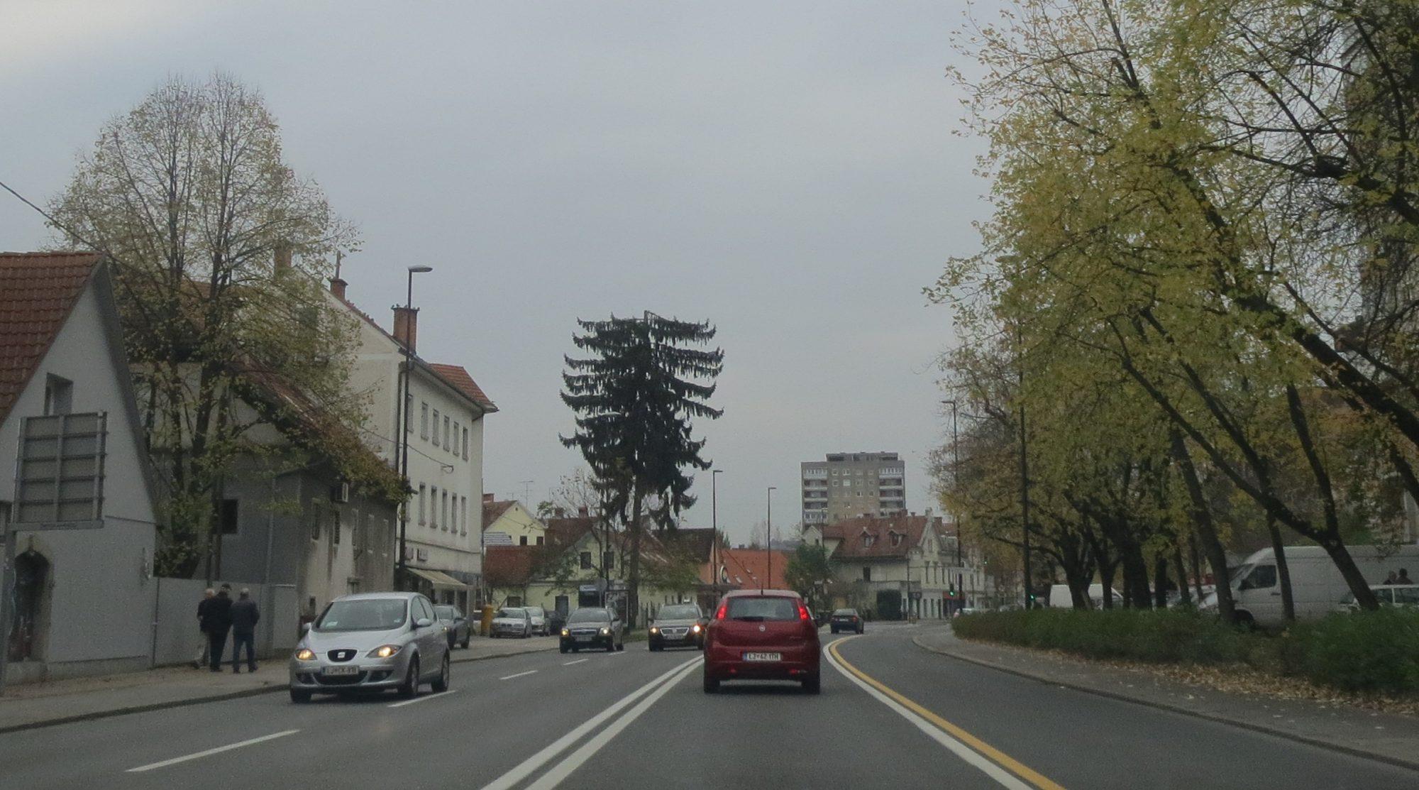 Mestna drevesa lahko zaščitimo