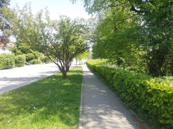 Sodelovanje pri pripravi Programa varstva okolja za Mestno občino Ljubljana 2021-2027